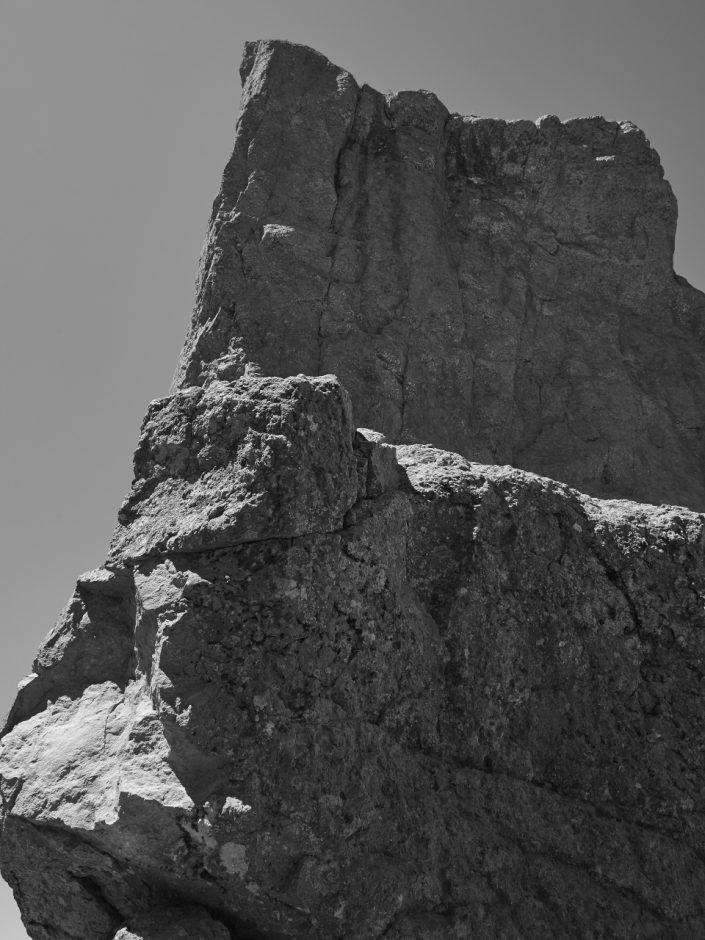 roche monochrome